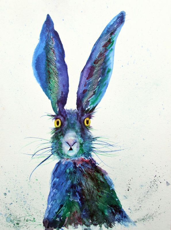 Blue rinsed hare...